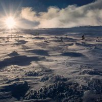 Снежное безмолвие :: Игорь Чубаров