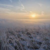 Утро :: Евгений Герасименко