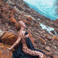 Леопард :: Наталья Осинская