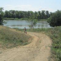 дорога к речке :: tgtyjdrf