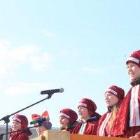 проводы зимы :: Валентина Боровкова