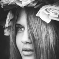 .. :: Kate Vasileva