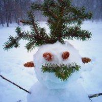 Снеговик :: Мария Кальченко-Буланова