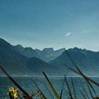 The Alps 2014 Switzerland Montreux 6 :: Arturs Ancans