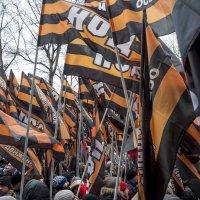 Флаги Антимайдана :: Алексей Окунеев
