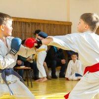 Соревнование по каратэ (Кумитэ) :: Finist_4 Ivanov
