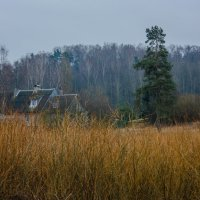 Три цвета конца зимы :: Игорь Вишняков