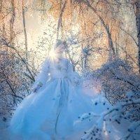 Ледяное сердце :: Мария Ипполитова