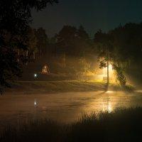 Туманный вечер :: Сергей Катилов