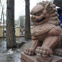 Вход в Петербургский дацан стерегут гранитные львы-охранники. Это львица :: Елена Павлова (Смолова)