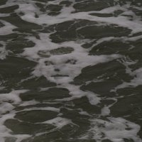 демоны моря :: Дмитрий Лебедихин
