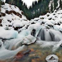 Поток :: Андрей Гомонов