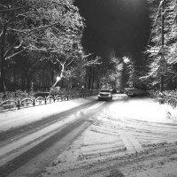 Зимний пейзаж :: Александр Липецкий