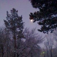 621. Зимний вечер :: Александр