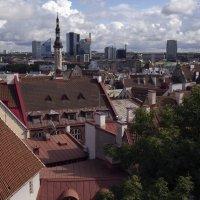 Разнообразие таллиннской архитектуры :: Александр Рябчиков