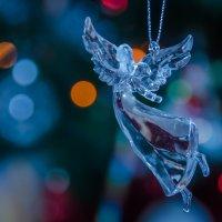 ангел :: Nina Delgado