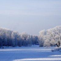 морозный день :: Мария Корнилова
