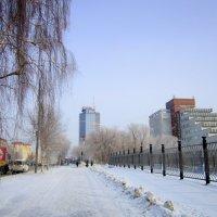 Новосибирская улица . Зима . :: Мила Бовкун