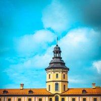 Несвижский замок :: Марина Шлык