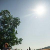 Солнечный день :: Сказка N