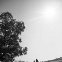Солнечный день (ЧБ) :: Сказка N