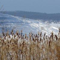 До свидания, зима.... :: Ната Волга