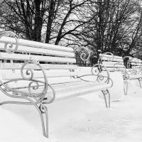 В зимнем парке. :: Маргарита ( Марта ) Дрожжина