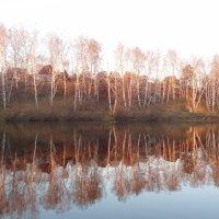 Дачное озеро :: Евгений Бугримов