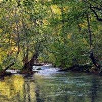 Горная река :: Виктор Фин