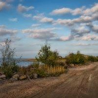 Дорога к форту :: Михаил Александров