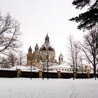 На фоне зимнем :: Genych
