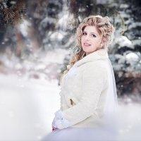 зимняя нежность :: Елена Дмитриева