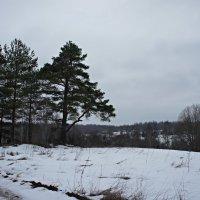 Последний день зимы :: Елена Смолова