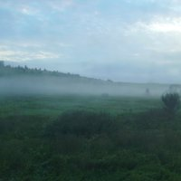 Туман , туман .... :: Андрей  Васильевич Коляскин