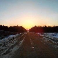 Весна... Путь в сторону солнца ) :: Анатолий Антонов