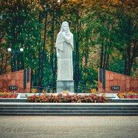 Украина. Мемориал скорби. :: Александр Гребенюк