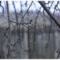 зимний дождь :: Viktoriya Bilan