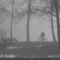"""""""А я еду, а я еду за туманом.."""") :: Lesya Vi"""