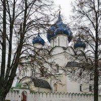 Рождественский собор :: Galina