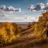 Осенний свет :: Марат Закиров
