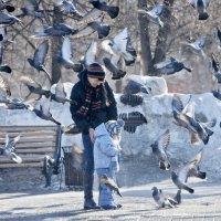 в стае птиц :: Татьяна Малинина