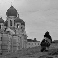 Прогулка по набережной :: Lera Morozova