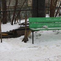 Почетная  скамья..... :: Валерия  Полещикова