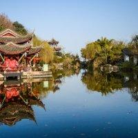 Парк цветущей сакуры - Китай, Мяньян :: Pavel Shardyko