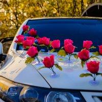 Дорожка из роз :: Эрнест Грутцин