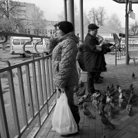 В ожидании автобуса :: Тамара Цилиакус