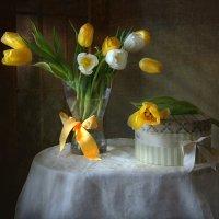 Пора тюльпанов... :: lady-viola2014 -