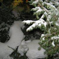 снег :: Инга Егорцева