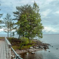 Финский залив :: Александр Силинский