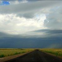 Дорога в дождь. :: Anna Gornostayeva